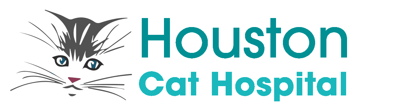 Houston Cat Hospital